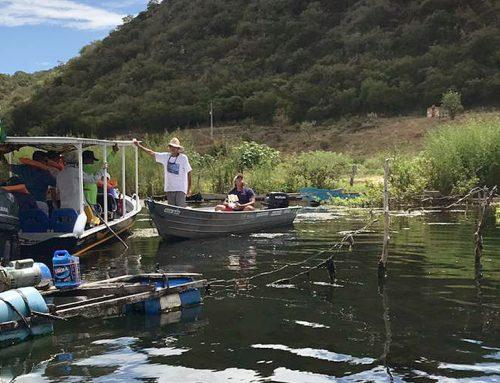 ACP das Algas gera inspeção da justiça federal no Baixo São Francisco