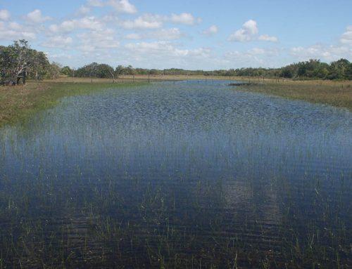 Relatório apresenta soluções para uso da água e sua conservação no Brasil