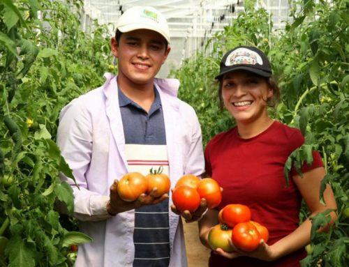 Fundo agrícola da ONU lança prêmio sobre juventude e inovação no meio rural