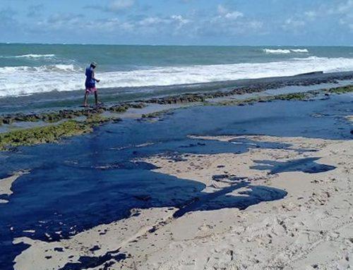 Zona costeira da foz do São Francisco atingida pela contaminação de petróleo cru