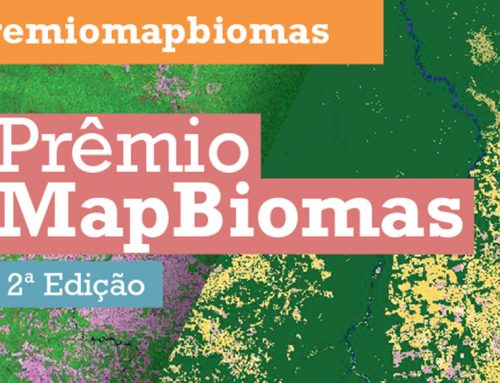 2a. Edição do Prêmio MapBiomas está com edital aberto