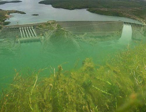 Dos donos da água para o Baixo São Francisco: vazão de 1.100 m³/s até setembro