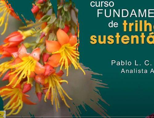 Trilhas sustentáveis: curso online gratuito disponível