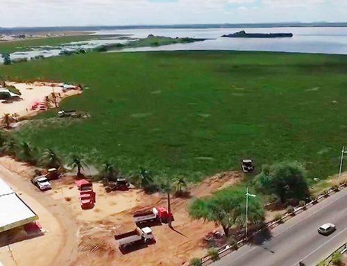 Liminar determina retirada de baronesas e descontaminação do Rio São Francisco na Bahia