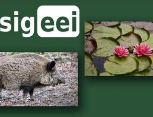 Reserva Mato da Onça adere ao SIGEEI para combater espécies exóticas